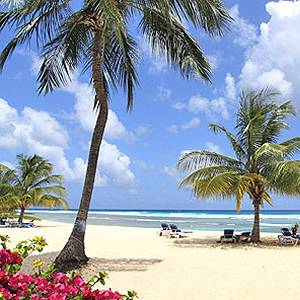 Pick of the Real Deals – Barbados Bargain