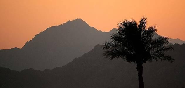 Top 5 Sharm El Sheikh Day Trips
