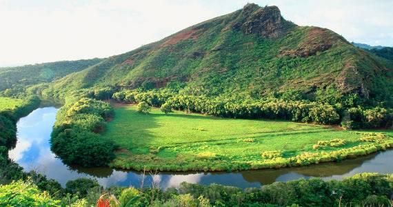 hawaii deal2