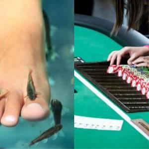 You Choose: Casino vs Spa