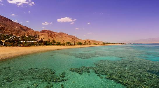 What to See on the Red Sea