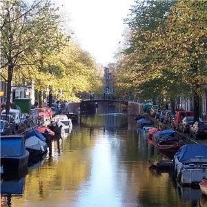Amsterdam's Best Street Markets