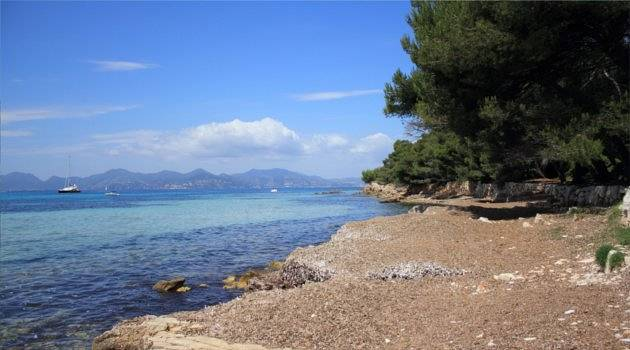 tiny pebble beach looking across water to cannes