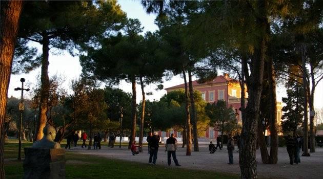 villa in trees