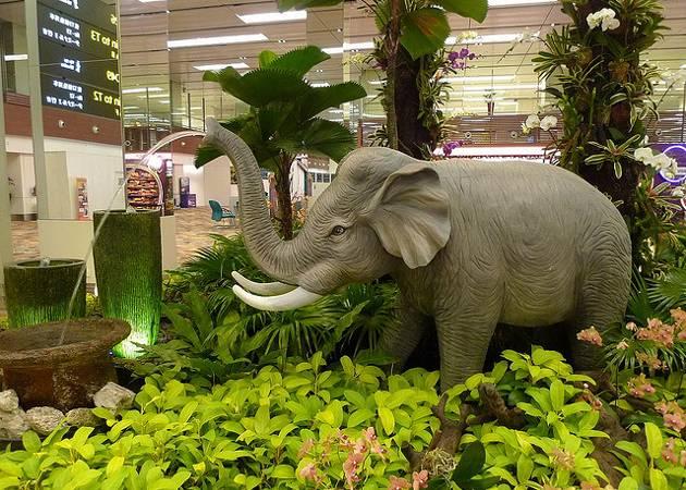 Elephant garden at Singapore Changi Airport