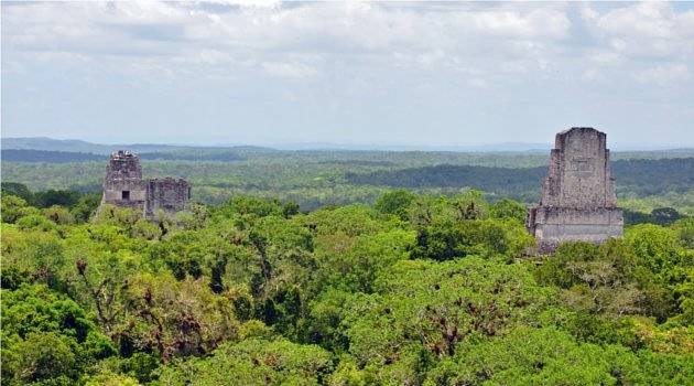 Two temples poking out of the rainforest, Tikal