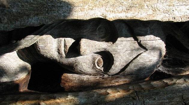 Crazy carvings