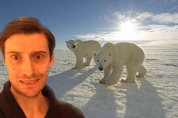 Polar bear selfie